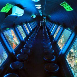 Submarine Trips