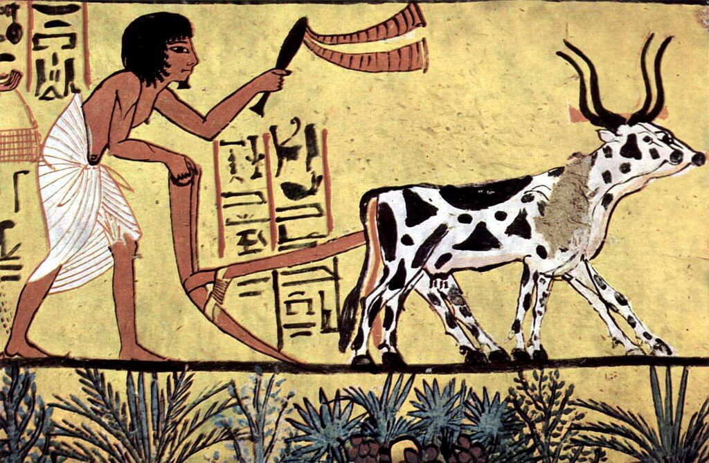 Ancient Egyptian Agriculture - Egypt Vacation Tours