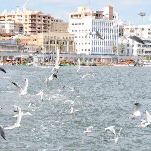 Port Said - Egypt Vacation Tours 2