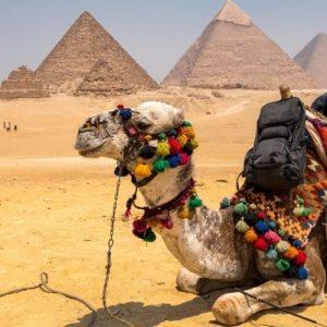 Cairo & Luxor Tour